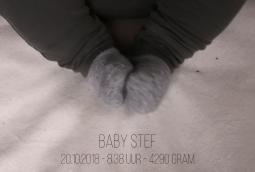 New born videoshoot: Familie Muilwijk