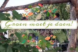 Basisschool de Borckeshof: sfeerimpressie Groene Schoolplein!